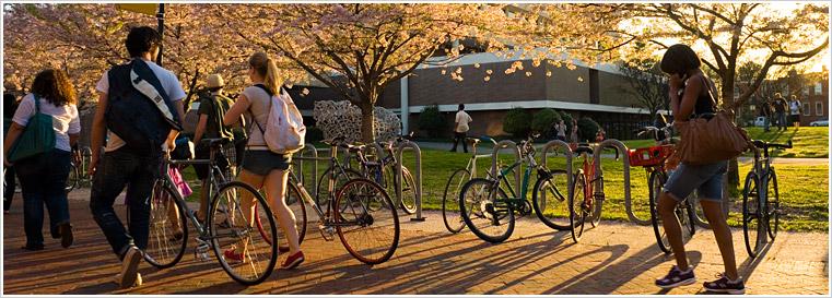 bikes-slide-03.jpg