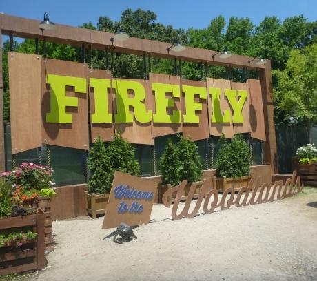 firefly2main.jpg