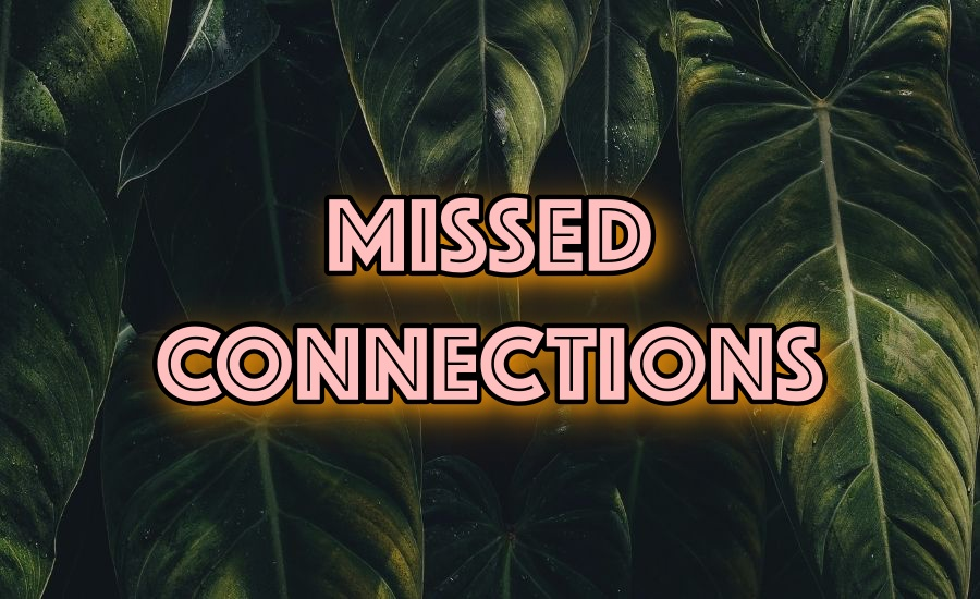 Best of VA Missed Connections August 21 – August 27
