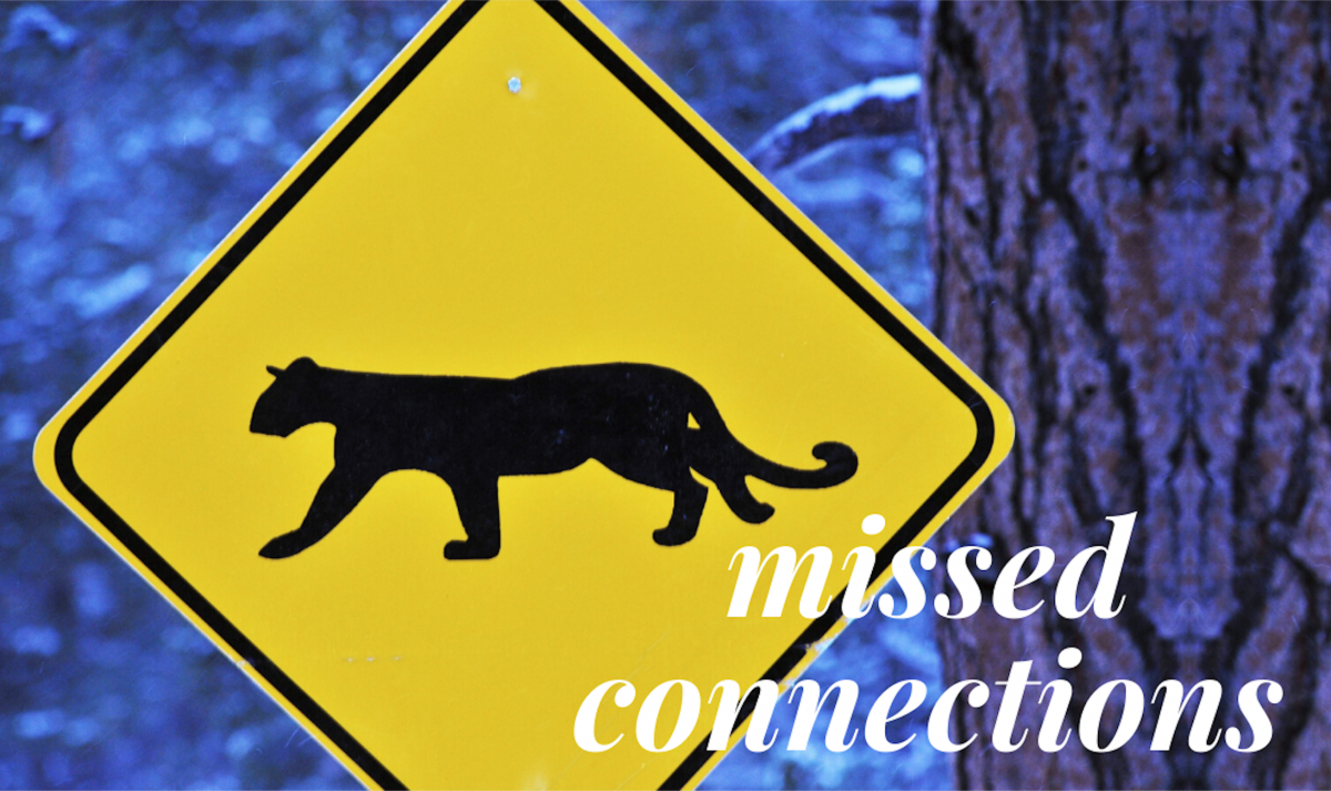 Best Of VA Missed Connections January 22 - January 28 ...